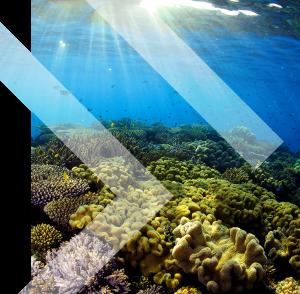 Undersea BG 01