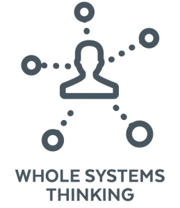 WHOLE SYSTEMS THINKING 01